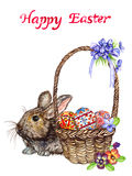 Easter bunny and basket with eggs with traditional painting, chick and spring flowers: pansies and violets, `Happy Easter` royalty free illustration