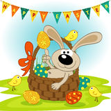 Easter bunny in basket Royalty Free Stock Photos