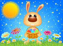 Easter bunny with basket. Vector Illustration EPS10 Stock Illustration
