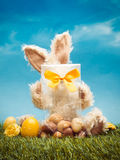 Easter Bunny Chocolates Stock Images