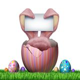 Easter Bunny Blank Sign. And happy holiday text isolated on a white background as a funny spring celebration with decorated eggs on grass as a 3D illustration Royalty Free Stock Photo