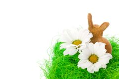 Easter bunny and blossom Stock Image