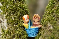 Easter Bunny in a Blue Basket in a Tree royalty free stock photo