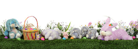 Easter Bunny Border Stock Photography