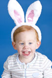 Easter bunny boy Stock Photo