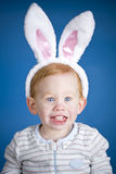 Easter bunny boy Stock Image