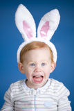 Easter bunny boy Royalty Free Stock Images