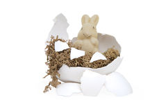 Easter Bunny in a broken egg Stock Image