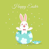 Easter bunny and broken egg 2 Royalty Free Stock Photo