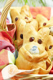 Easter bunny buns Royalty Free Stock Photo