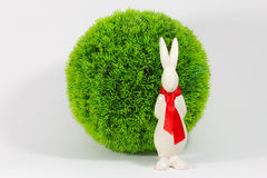 Easter Bunny before a Bush Royalty Free Stock Images