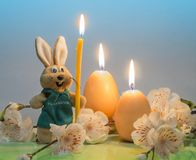 Easter bunny with candles in the shape of eggs on a blue background, a branch with flowers. stock images