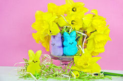 Easter bunny candy and daffodils Stock Photography