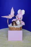 Easter Bunny -  Card , Eggs in Basket - Stock Photo Stock Photography
