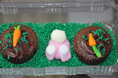 Easter bunny and carrot cupcakes. A box with Easter bunny and carrot decorated cupcakes Royalty Free Stock Images