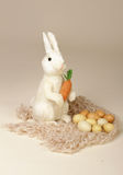 Easter Bunny with Carrot and Eggs Stock Images