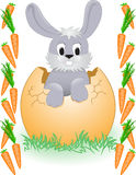 Easter Bunny in the carrot frame Stock Images