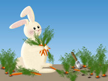 Easter Bunny in Carrot Patch Background Royalty Free Stock Images