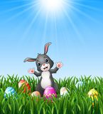 Easter bunny cartoon with Easter eggs in the grass on a background of bright sunshine Stock Image