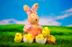 Easter Bunny with Chick Happy Easter Egg Royalty Free Stock Photography