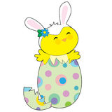 Easter Bunny Chick Royalty Free Stock Image