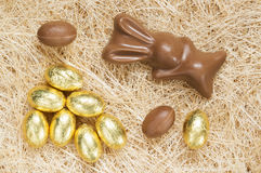 Easter bunny and chocolate eggs Stock Image