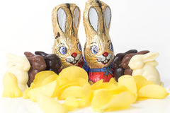 Easter bunny chocolate parade Stock Photos