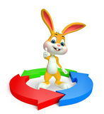 Easter Bunny with circular graph Royalty Free Stock Photography