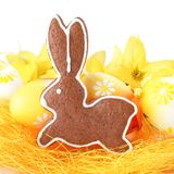 Easter bunny. Close-up of Easter gingerbread cookie and Easter eggs royalty free stock photography