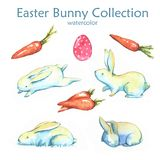 Easter bunny collection. Hand-drawn watercolor collection of Easter cute bunnies, carrots and colored eggs isolated on the white background. Set of holiday Vector Illustration