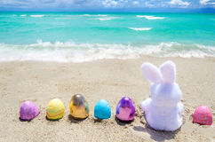 Easter bunny with color eggs on the ocean beach Royalty Free Stock Image