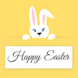 Easter bunny on a colored background Royalty Free Stock Photos