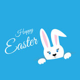 Easter bunny on a colored background Stock Photo