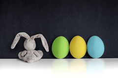 Easter Bunny with colored eggs on the black chalkboard stock images