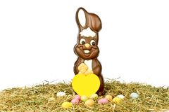 Easter bunny with colored eggs in straw Stock Photos