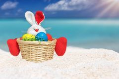 Easter bunny with colored eggs on a tropical beach Royalty Free Stock Photos
