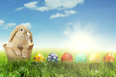Easter bunny with colorful Easter eggs Royalty Free Stock Images