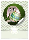 Easter Bunny With Colorful Egg. Stock Photos