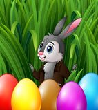 Easter bunny and colorful eggs in the grass bushes Royalty Free Stock Images