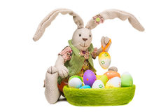 Easter bunny with colorful eggs on  white Royalty Free Stock Photography