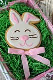 Easter bunny cookie Stock Photography