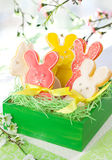 Easter Bunny Cookies Royalty Free Stock Images