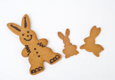 Easter bunny cookies stock illustration