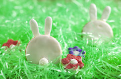 Easter bunny cookies Royalty Free Stock Photo