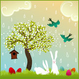 Easter bunny couple in nature Royalty Free Stock Photography