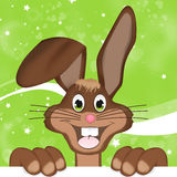 Easter Bunny. Creative Color Design Stock Photography