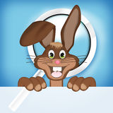 Easter Bunny. Creative Color Design Royalty Free Stock Photo