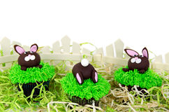 Easter bunny cupcakes Royalty Free Stock Photography