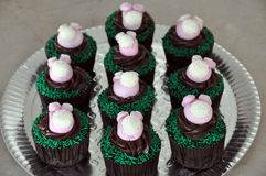 Easter bunny cupcakes Stock Images