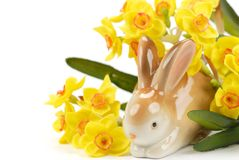 Easter bunny and daffodil Royalty Free Stock Image